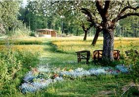 Lebensraum Garten Hohenfels